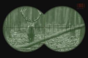 deer walking towards a hunter at night with a view through nightvision goggles