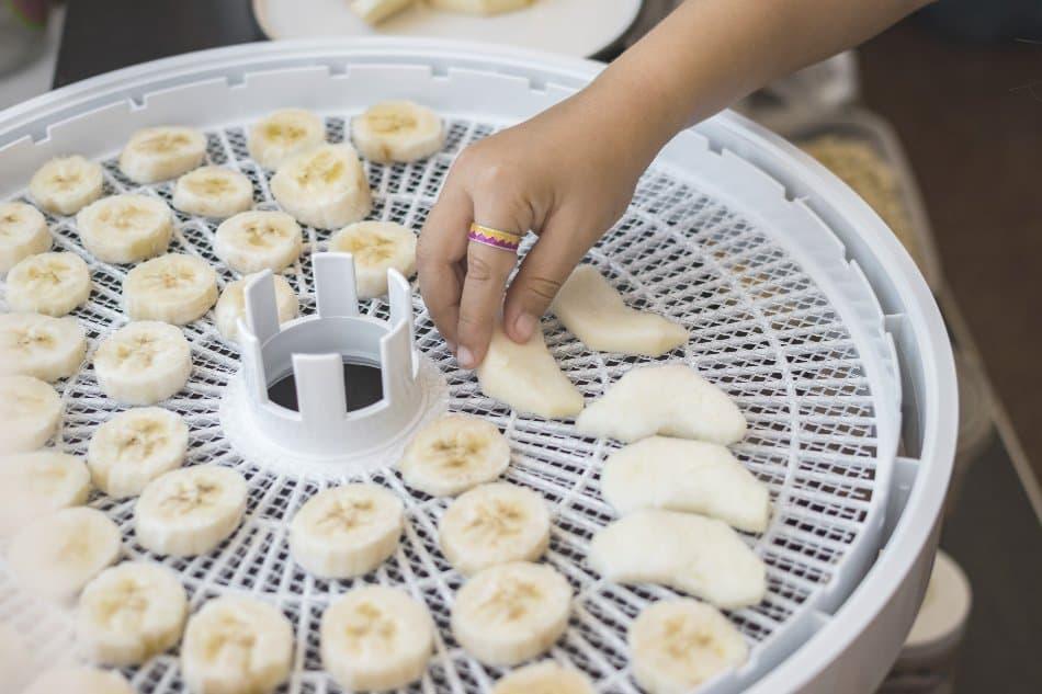 child places sliced bananas onto dehydrators tray