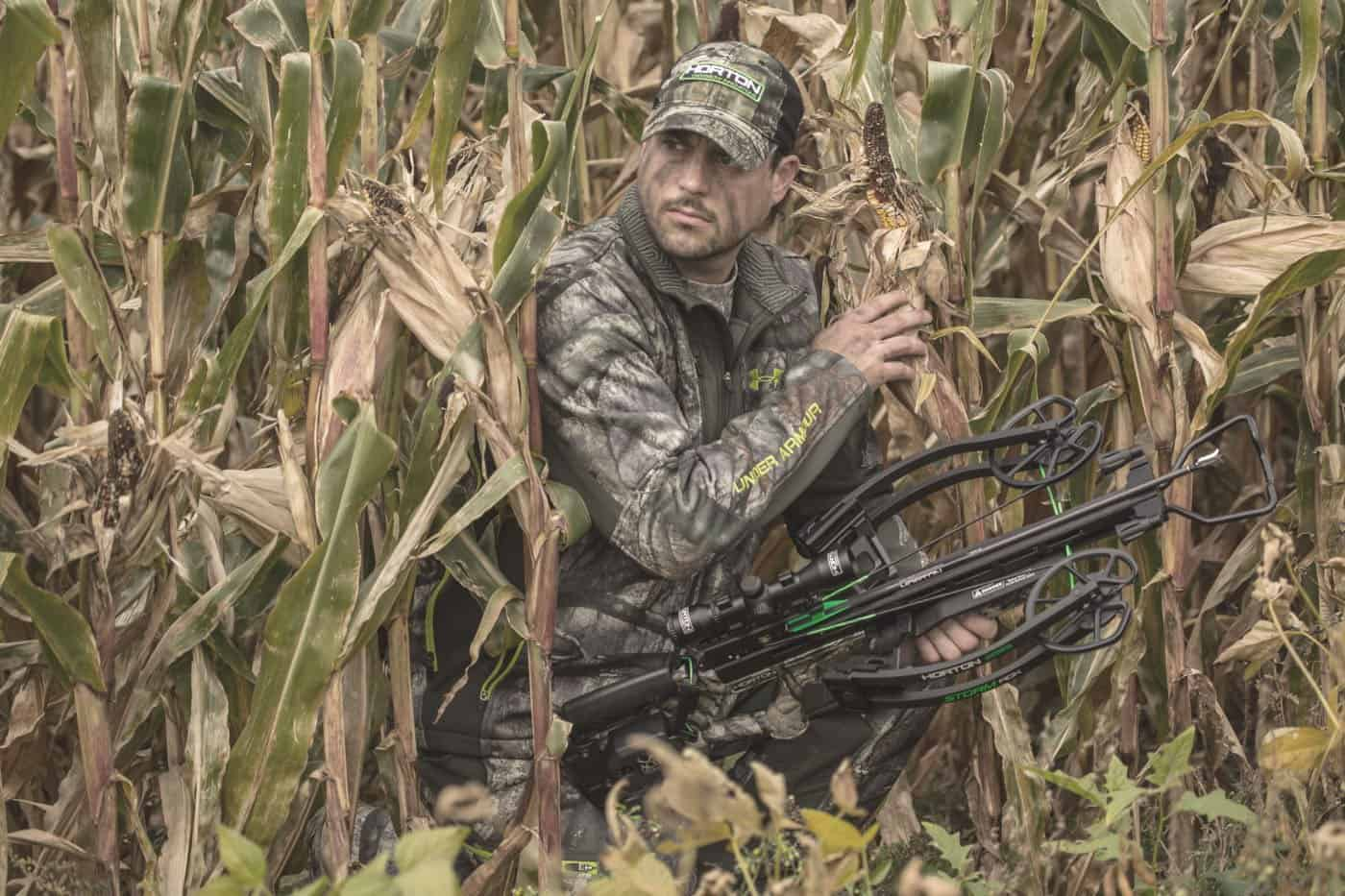 hunting man hiding in the corn fields with his crossbow