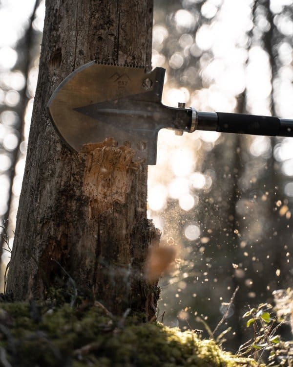 survival shovel being used to remove bark from a tree for kindling