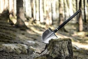 serrated edge of survival shovel wedged into tree stump in the woods