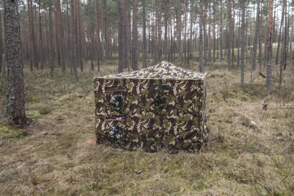 hunting blind on forest floor