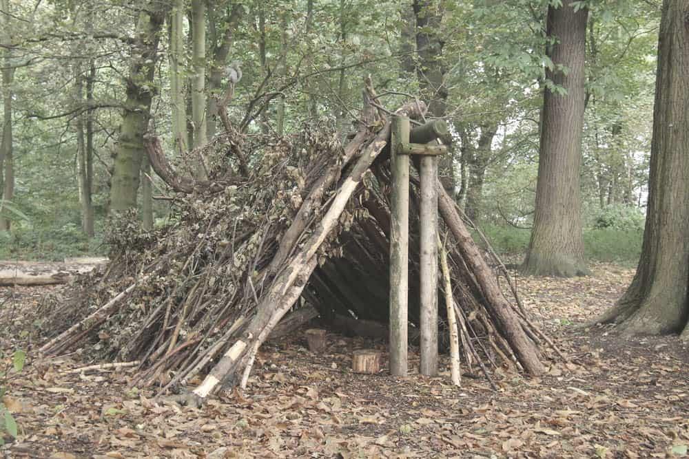 a frame forest survival shelter