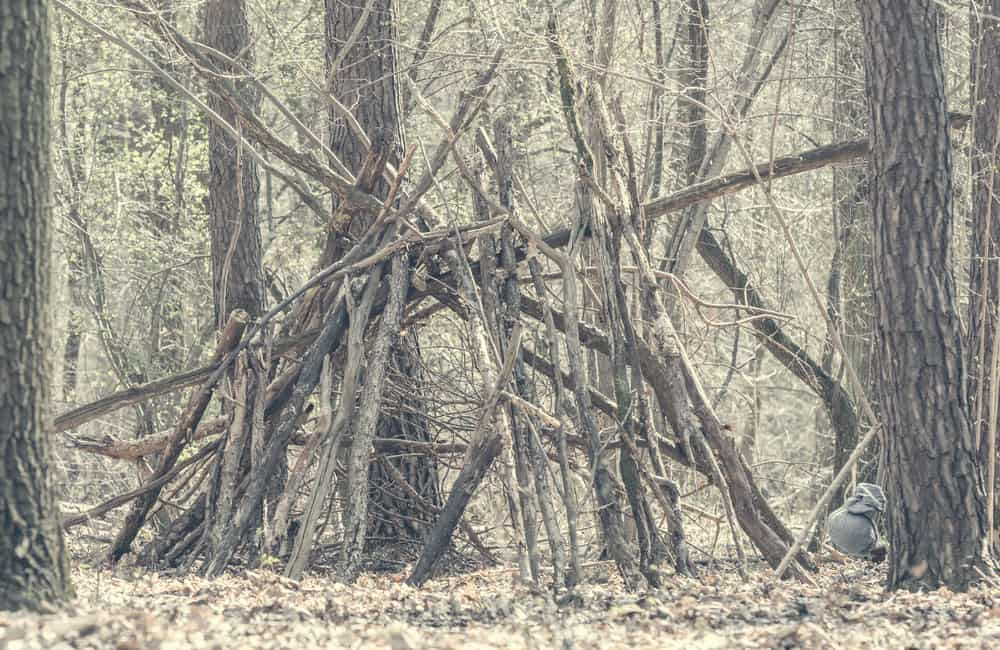 shelter using branches in forest