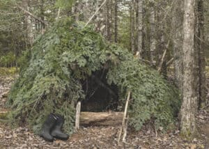 wilderness survival shelter in forest made from trees