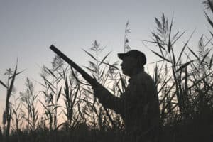 hunter with gun hiding in reeds waiting for the shot